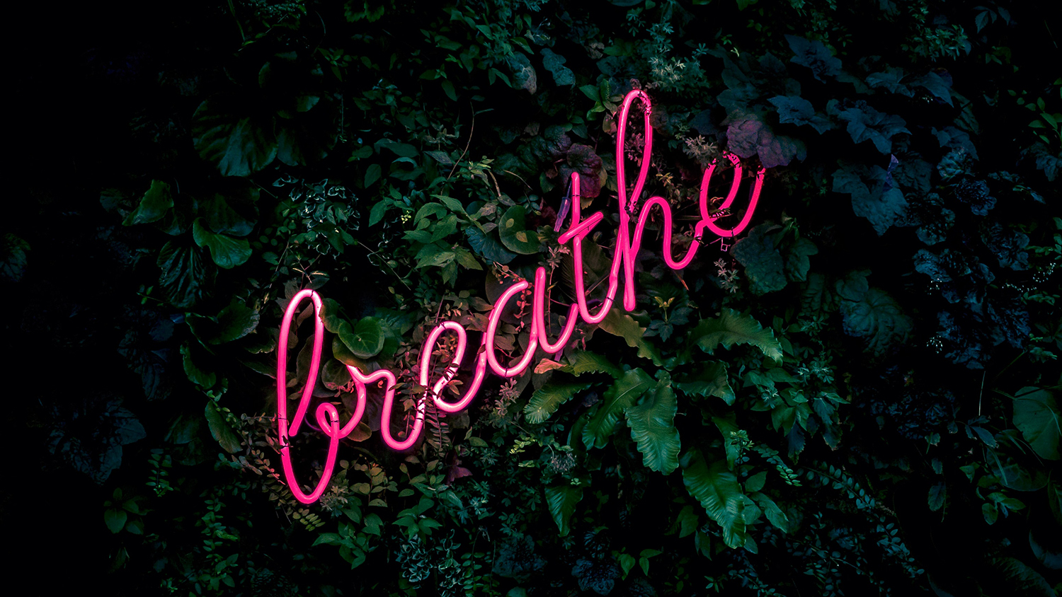 breathe neon sign among leaves