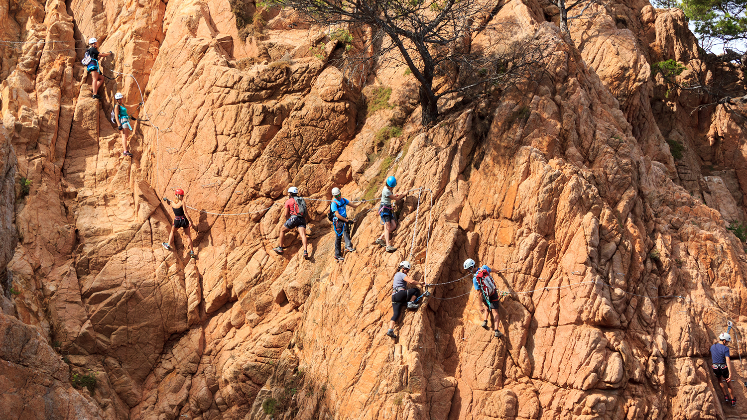 team of climbers ascending the side of a mountain wall